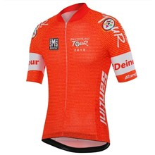 912f23e49 2018 DEUTSCHLAND TOUR Cycling Jersey Ropa Ciclismo Short Sleeve Only  Cycling Clothing cycle jerseys Ciclismo bicicletas